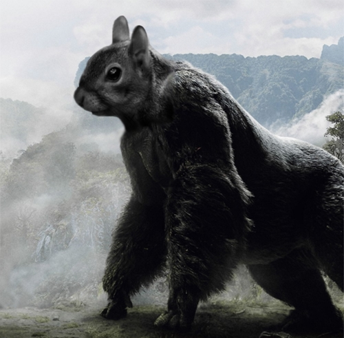 Squirrel-Kong