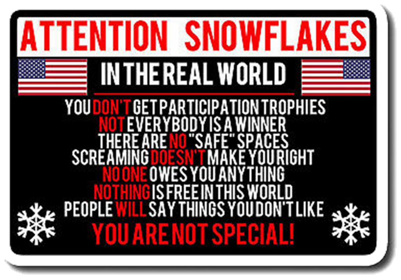not a snowflake3.png