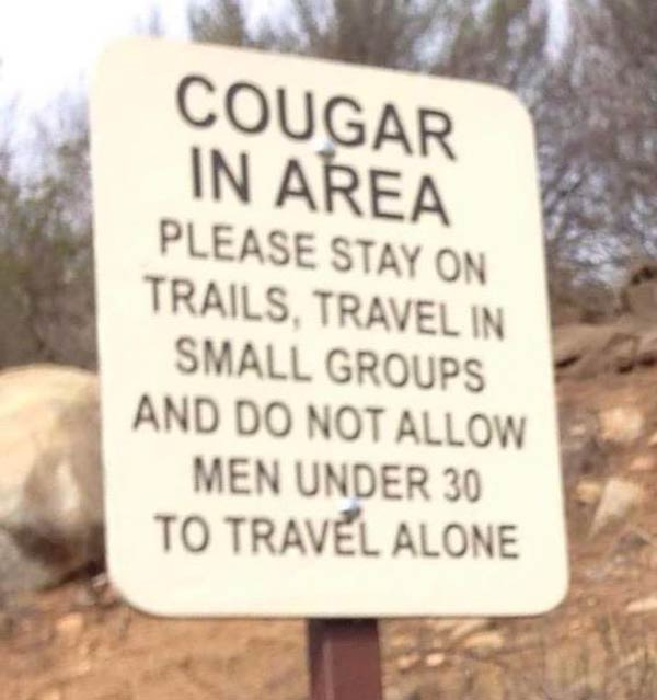 Cougar-in-the-area